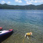 本栖湖でSUPと水遊び